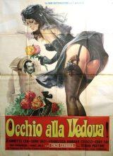 Occhio Alla Vedova!